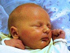 Miroslav Bural, Rokytnice, narozen dne 18. listopadu 2013 v Přerově, míra: 48 cm, váha 3510 g