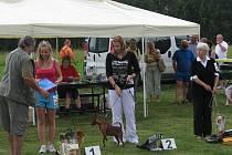Voříškiáda – výstava psů