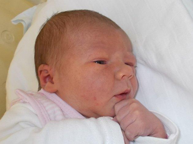Alice Bahounková, Oldřichov, narozen dne 8. listopadu 2015 v Přerově, míra: 52 cm, váha: 3778 g