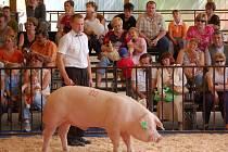 Čtyřdenní přehlídku hospodářských zvířat a nejmodernější zemědělské techniky si prohlédlo na 40 tisíc návštěvníků z celé republiky.