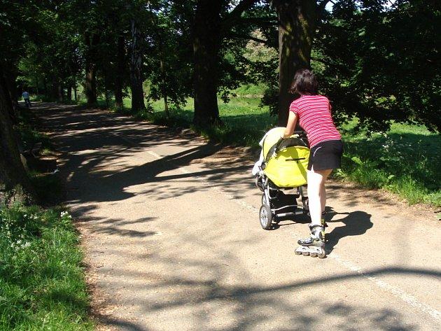 Do stromové aleje mezi lávkou u sokolovny a u tenisu míří denně na procházku maminky s kočárky a na lavičkách u Bečvy posedávají senioři.