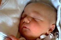 Sofie Mikulášová, Bělotín, narozena dne 12. srpna 2013 v Novém Jičině , míra: 50 cm, váha:  3630 g