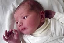 Daniela Řehulová, Hranice, narozena dne 17. prosince 2013 v Přerově, míra: 48 cm, váha: 2 916 g