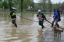 V obci Ústí mají na návsi stále ještě obrovské jezero.