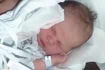 Maxmilian Schelle, Přerov, narozen 21. června v Přerově, míra 52 cm, váha 3 800 g