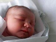 Adélka Steiningerová, Přerov, narozena dne 3. října 2016, v Přerově, míra: 48 cm, váha: 3190 g