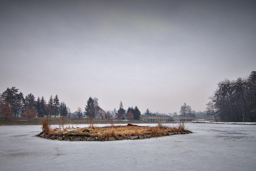 Z ostrůvku rybníku Kuchyňka vrba zmizela v úterý 6. března 2018