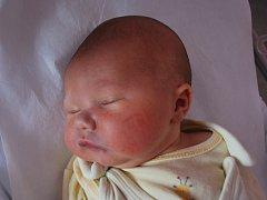 Matýsek Kulička, Pavlovice u Přerova, narozen dne 28. ledna 2013 v Přerově, míra: 52 cm, váha: 3840 g