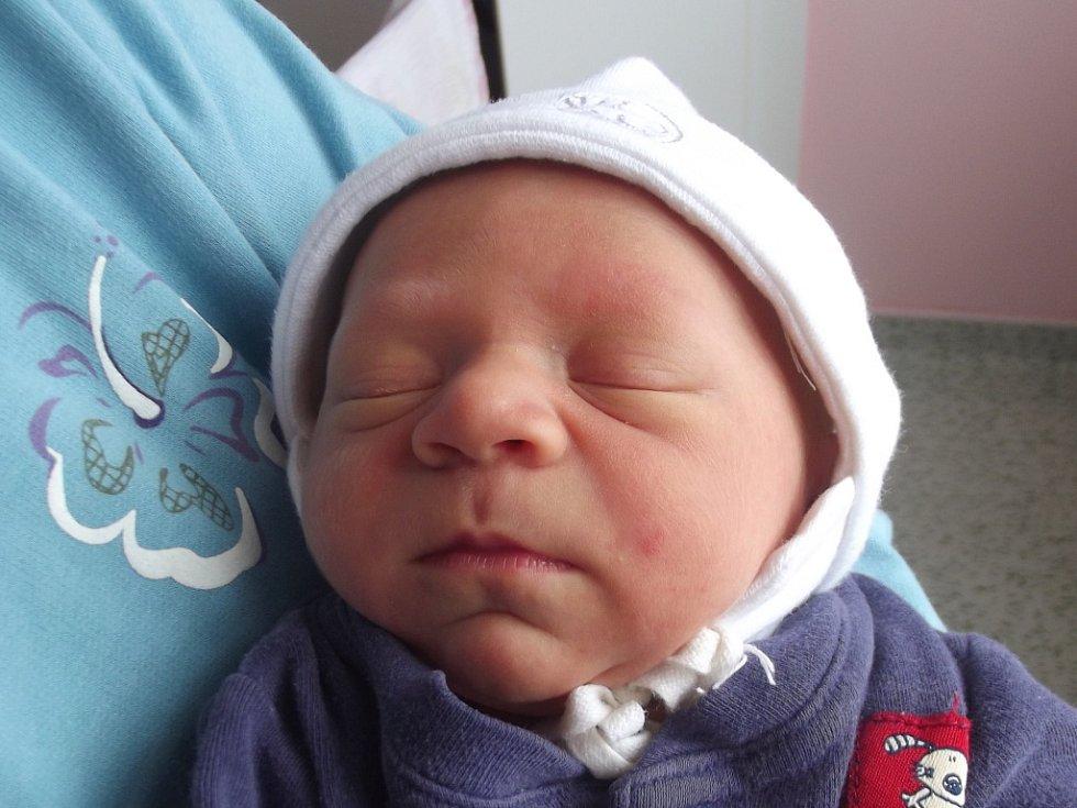 Václav Pavelka, Přestavlky, narozen dne 9. května 2013 v Přerově, míra: 46 cm, váha: 2648 g