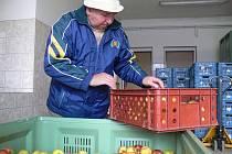 Kvalitní české ovoce je letos výrazně cenově podhodnoceno.