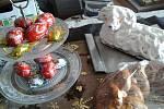 Velikonoční pečení z Drahotuš.