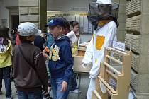Výherci výtvarné soutěže Včela v přírodě převzali v pondělí dopoledne ve dvoraně hranického zámku ocenění