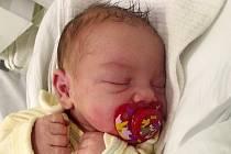 Adell Petříková, Přerov, narozena dne 1. února 2015 v Přerově, míra: 49 cm, míra: 3210 g