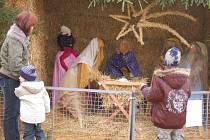 V areálu Střední školy zemědělské v Přerově mohou lidé spatřit  originální betlém zhotovený ze slámy a sena.