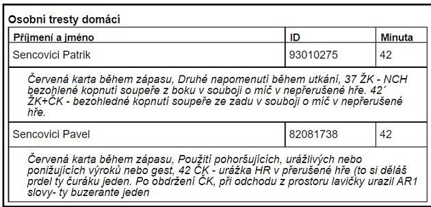 Bratři Patrik a Pavel Sencovici společně dostali červenou kartu. Ze zápisu outkání