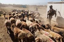 Vojáci 7. strážní roty provádějí pravidelné kontroly, aby zabránily odpalování raket na základnu a zamezily povstaleckým skupinám pokládat výbušniny na pozemní komunikace.