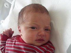 Monika Mikešová, Praha, narozena dne 1. března 2014 v Přerově, míra: 48 cm, váha: 3018 g