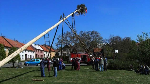 V Horním Újezdě staví májku místní dobrovolní hasiči postaru – ručně.