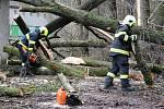 Hasiči odstraňují větve spadené na garáž v Hranicích, 10.2.2020