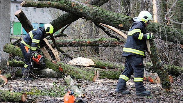 V Hranicích popadaly stromy na garáž