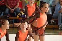 Přerovské moderní gymnastky se zúčastnily rekordního počtu dvanácti pohárových soutěží, šesti oblastních přeborů a tři závodnice reprezentovaly oddíl na mistrovství republiky.