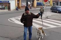 Chovatelé psů musejí do 31. března zaplatit poplatek za své čtyřnohé miláčky. Pokud se opozdí, čekají je sankce.