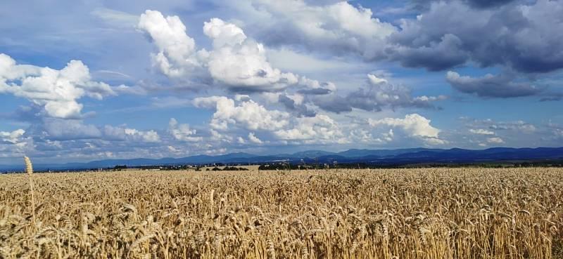 Putování přírodou Hranicka a Moravy.