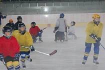 První trénink na zrekonstruovaném zimním stadionu v Přerově ve čtvrtek 3. září.