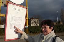 Mnozí z Hraničanů si stěžují na tmu, která zabraňuje nejen čtení jízdních řádů, ale také bezpečnému průchodu přes nádraží