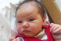 Laura Lukášová, Přerov, narozena dne 6. října 2014 v Přerově, míra: 49 cm, váha: 3470 g