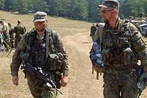 Armádní cvičení Allied Spirit II