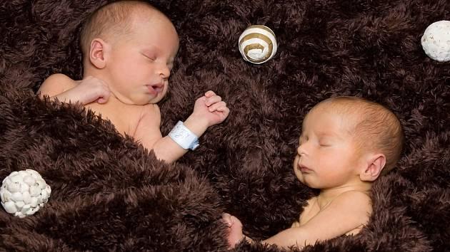 Dan a Tom Hrudíkovi, Přerov, narozeni dne 11. dubna 2013 v Přerově, míry: 44 cm a 46 cm, váhy: 1 828 g a 2 420 g