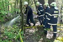 Hasiči zasahují při požáru lesa v osadě Šafranica