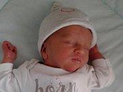 Robin Tomčík, Přerov, narozen dne 22. října 2016 v Přerově, míra: 45 cm, váha: 2340 g