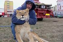 Návštěvníkům cirkusu Carini se v Hranicích tento týden ukáže i sedmiměsíční lvíče Apollo.