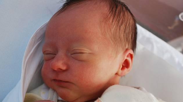 Adriana Novotná, Přerov, narozena 16. dubna 2012 ve Přerově, míra 49 cm, váha 3 070 g