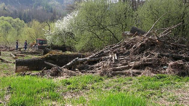 S čištěním koryt a břehů menších toků na Hranicku začalo letos na jaře Povodí Moravy