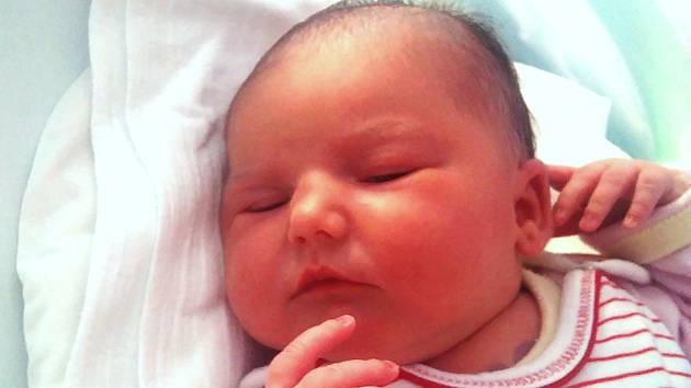 Patricie Jackulaková, Bělotín, narozena dne 2. srpna 2016 v Olomouci, míra: 56 cm, váha: 3940 g