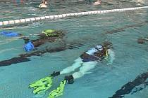 Na hranické plovárně se v sobotu mezi plavci pohybovali potápeči. Návštěvníci si totiž mohli vyzkoušet potápění s plnou výstrojí.