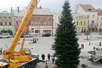 Instalace vánočního stromu na hranickém náměstí
