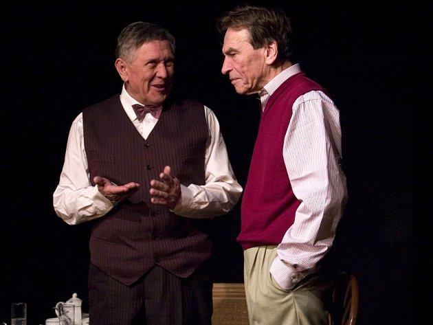Představení divadla Ungelt s názvem Ledňáček se koná ve čtvrtek 14. května od 20 hodin v Divadle Stará střelnice.