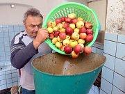 Zahrádkáři v Hranicích moštují nadúrodu jablek.