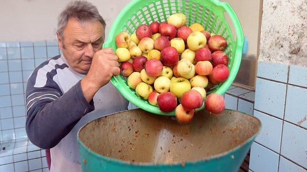 Zahrádkáři v Hranicích na Moravě moštují nadúrodu jablek.