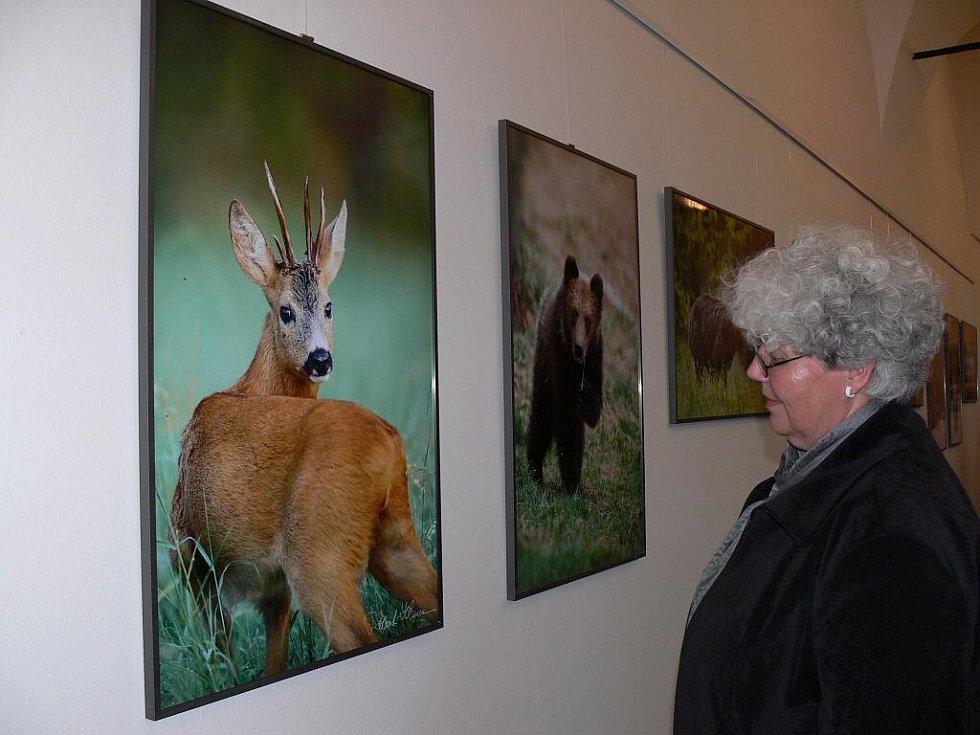 Výstava fotografií s názvem Prchavá setkání