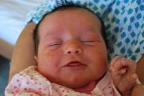 Karolína Zmeškalová, Hradčany, narozena 26. října 2010 v Přerově, míra 49 cm, váha 3 660 g