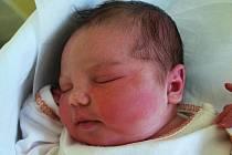 Kateřina Gárská, Dobrčice, narozena 15. dubna 2011 v Přerově, míra 53 cm, váha 4 030 g