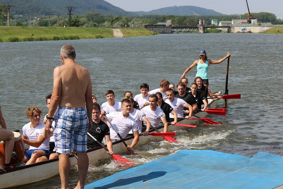 Festival dračích lodí na hranické Bečvě - závody základních a středních škol