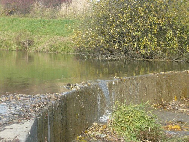 Hráz rybníka vDrahotuších