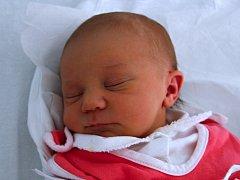 Nikol Grmelová, Přerov, narozena dne 6. května 2013 v Přerově, míra: 50 cm, váha: 3118 g