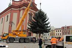Na hranické náměstí v pátek 24. listopadu dopoledne dorazil vánoční strom.